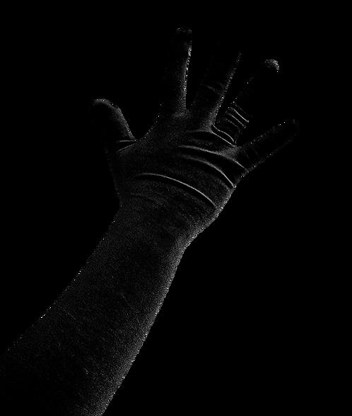 LUVA BLACK VELVET