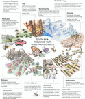 Death by a Thousand Cuts: Insect Decline in the Anthropocene
