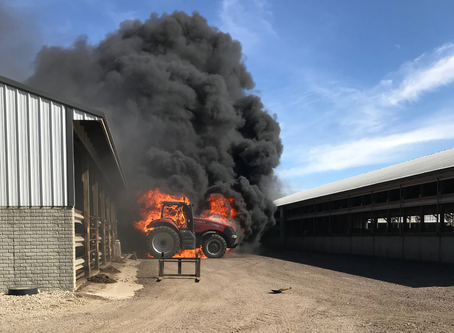 Adrian's 3b Farms loses 200 head of cattle in fire