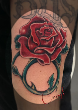 Red Red Rose and Vines