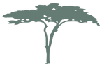 Favicon-map.png