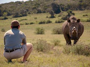 Rhino+man-OP.jpg
