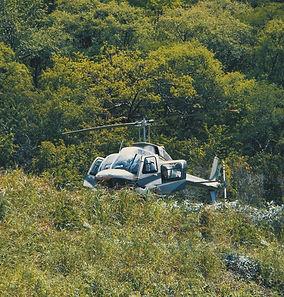 heli-in-the-bush2.jpg