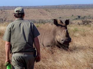 Rhino-preservation-OP.jpg