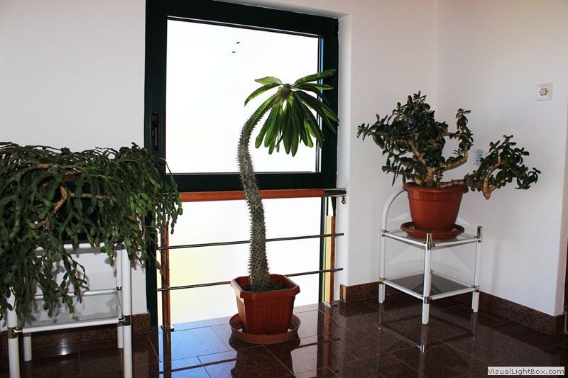 apartmani_more-0048