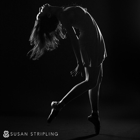 Photography: Susan Stripling
