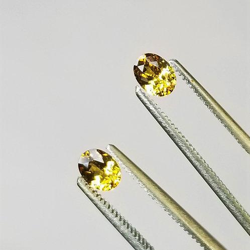 Golden Sapphire1.03 cttw