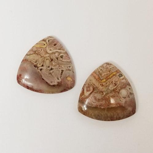 Fossil Fern 40.86 cttw