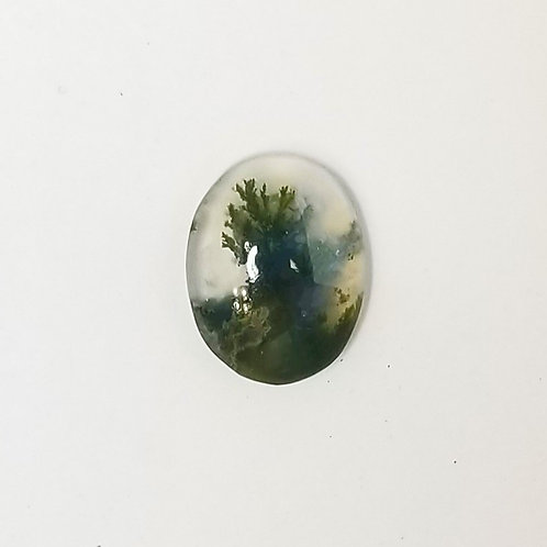 Moss Agate 6.04 ct
