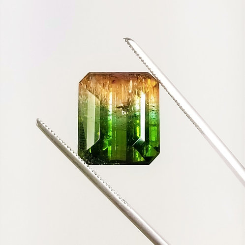 Parti-Color Tourmaline 19.76 ct