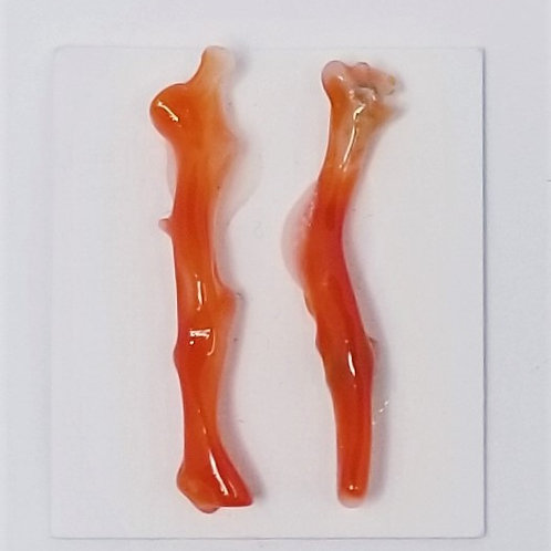 Small Red Coral Branch Pair
