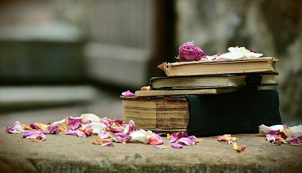 books-2447391_960_720.jpg