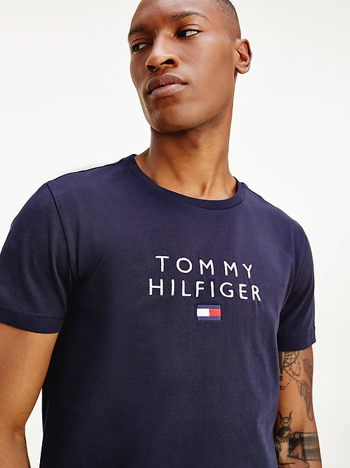 Stacked Tommy Flag Tee in Desert Sky