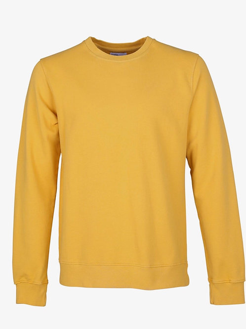 Colourful Standard Classic Crew in Burned Yellow
