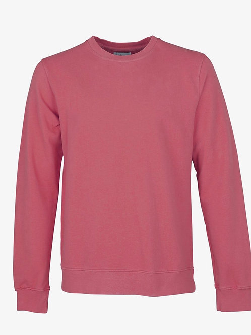 Colourful Standard Classic Crew in Rasberry Pink