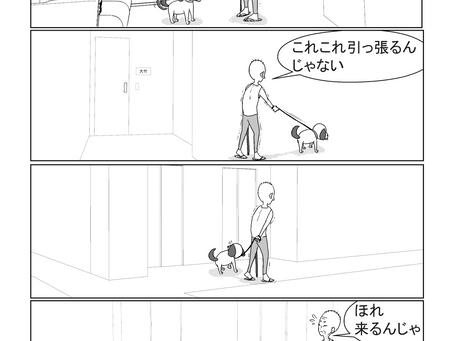 犬の散歩/タワーマンション/東京都