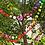 Thumbnail: Rainbow Pom Pom Garland