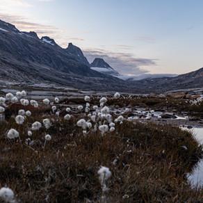 Dagbog fra Challenge Greenland: Dag 4 til 6