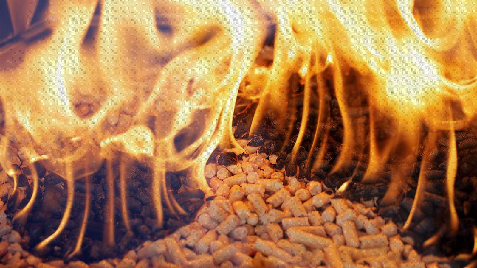 pellets_31.jpg