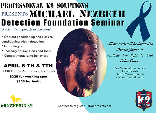 Detection Foundation Seminar with Michael Nezbeth