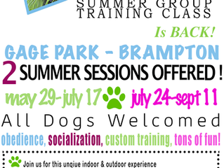 Adding a Extra Camp Canine Class !! MORE SPOTS OPEN!!!