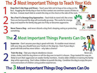 Dog Bite Prevention for Children