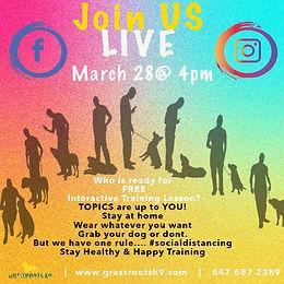 Free Online Training Class!