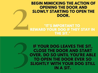 5 Ways to Help With Door Manners
