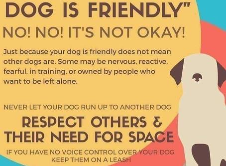 Its okay to say NO!