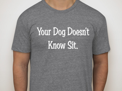 Your Dog Doesn't Know Sit