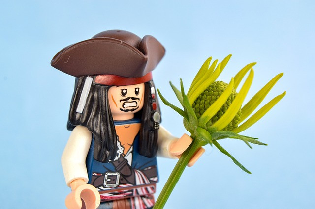 The Office Unicorn Blog Pirate Jack Sparrow lego