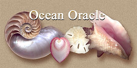 Logo for Ocean Oracle 2 inches wide.jpg