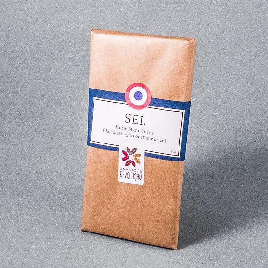 Chocolate Fleur de Sel (75%)