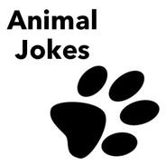 Animal Jokes.jpg