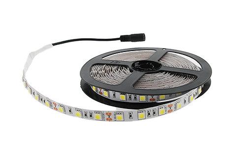 Tape Lights 5M 12V 6500K 14.4Wpm
