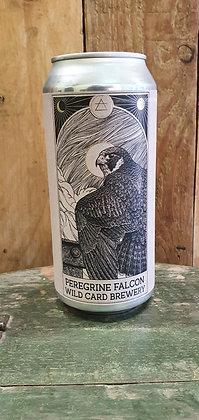 Wild Card - Peregrine Falcon