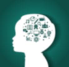 Brain-development.jpg