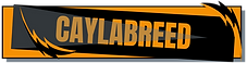 CaylabReed-Logo.png