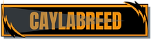CaylabReed Logo