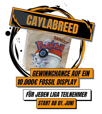 LIGA%20Fossil%20Display%20Englisch_edite