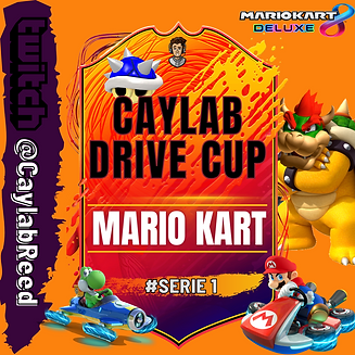 Mario Kart 8 Turnier Serie 1.png