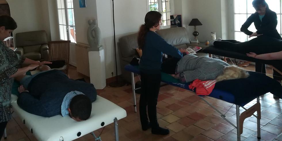 2me degré :  Praticien Reiki confirmé avec soin et symboles  300 €/2 jrs
