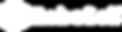 logo-white-transparent-377x100.png