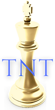 TNT United Services Inc. Digital Marketi