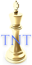 TNT United Services Inc. Digital Marketi