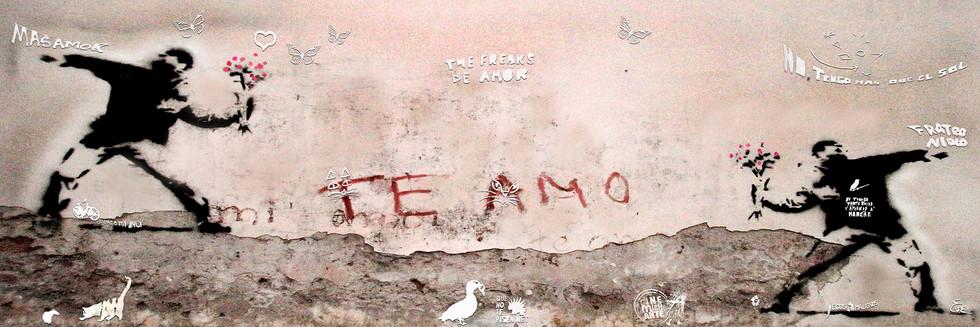 Te Amo / Love you
