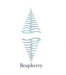 bospherry-page-001_edited.jpg