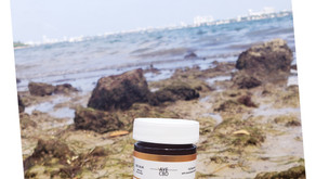 CBD salve is one of the best topical products to use when in pain.