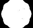 spotlight-logo-.png