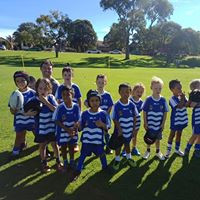 Awesome Jrs Preseason at the Willagee Bears